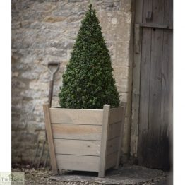 Spruce Wood Tapered Planter_1