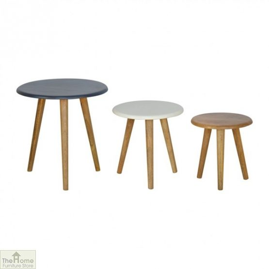 Winchester Navy Round Nest 3 Tables_2