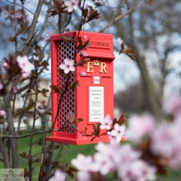 Post Box Hanging Bird Feeder_1