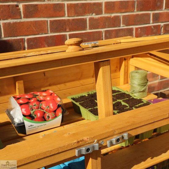 4 x 2 Mini Wooden Greenhouse_5