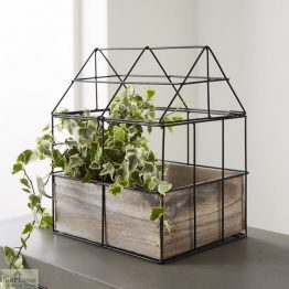 Greenhouse Tabletop Herb Planter_1